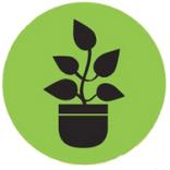 planta generico